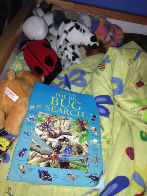 Book at Foot of Flora Bed