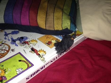 Book CH Under Pillow