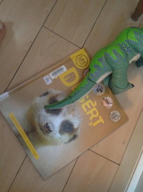 Book Under Dino
