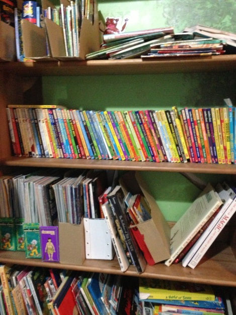Books on Boys Shelf